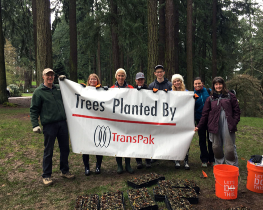 TransPak's Oregon Team Plants Trees image